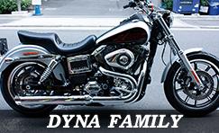 DYNA FAMILY